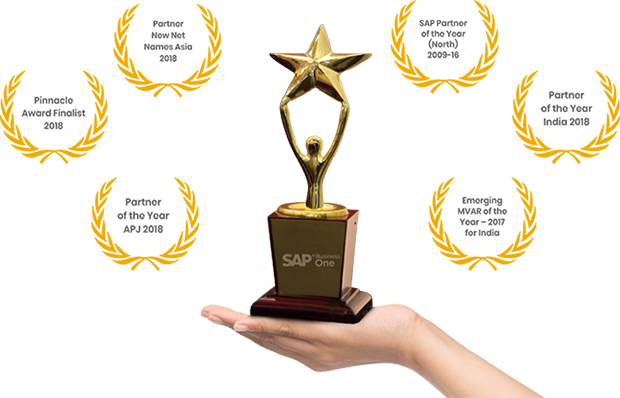 SAP Business one Platinum Partner