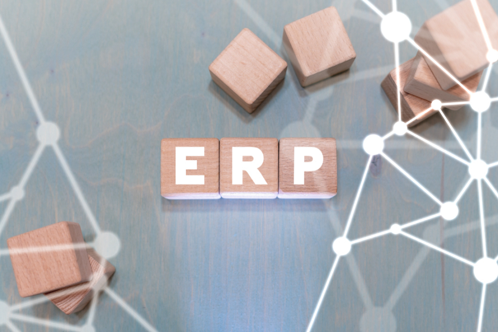 ERP Features